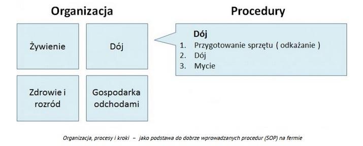 <strong>Jak napisać procedurę przykład</strong> (zawsze aktualny!) 6