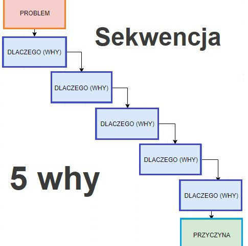 5 why