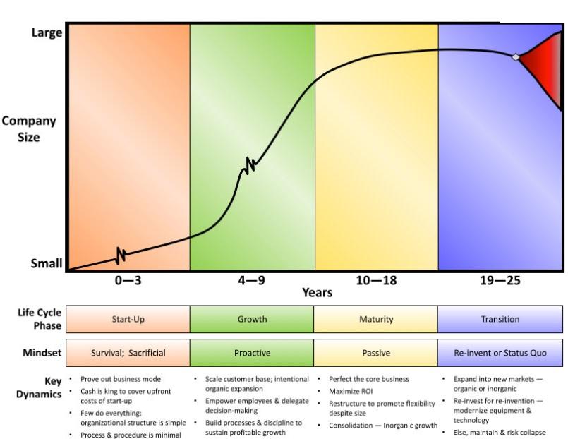 cykl życia firmy